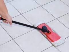 Sweep or vacuum the floor daily